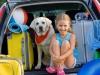 Как пережить длинную поездку с ребенком?