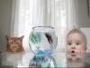 Как выбрать аквариум для ребенка?