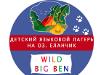 Языковой лагерь «BBcamp» на озере Еланчик