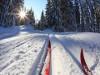 Лыжная база в сосновом бору открыла зимний сезон