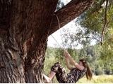 Покорение высот от Седых Ирина, 12 лет