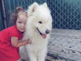 Любовь с первого взгляда - Минеева Виктория, 2 года 8 месяцев