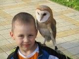 Первая встреча с совой - Марк Бесюк, 6 лет