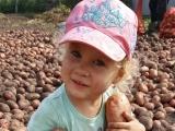 Вот это урожай - Мочалкина Милана, 2 года 10 месяцев