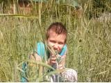 Внук на страже -Клюшин Глеб, 8 лет